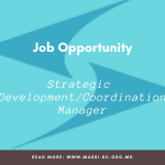Open vacancy – Strategic Development and Coordination Manager
