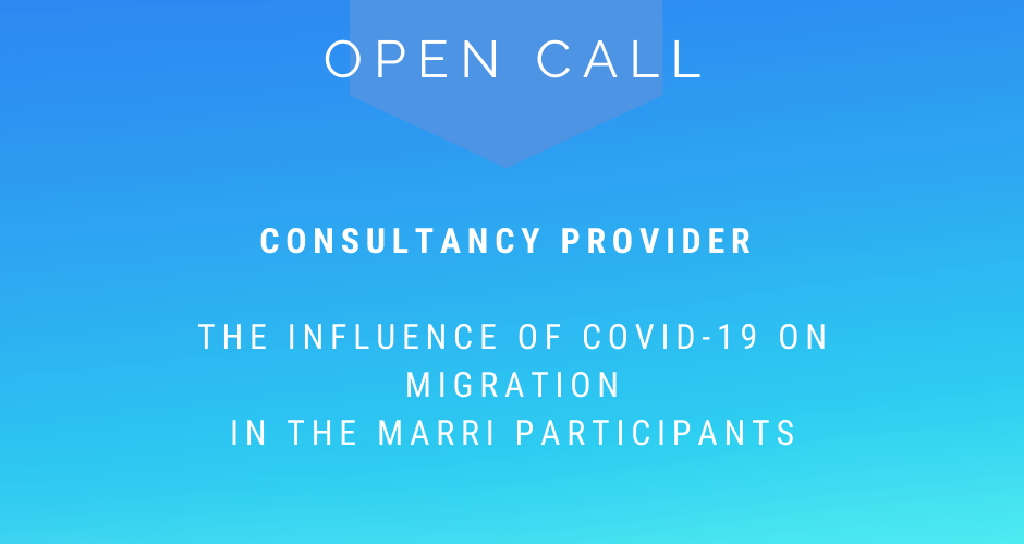 Open call - Consultancy provider